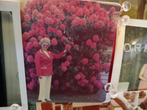 Nora standing in front of her neighbour Shirley Maki's rhododendron, in what is now our back garden