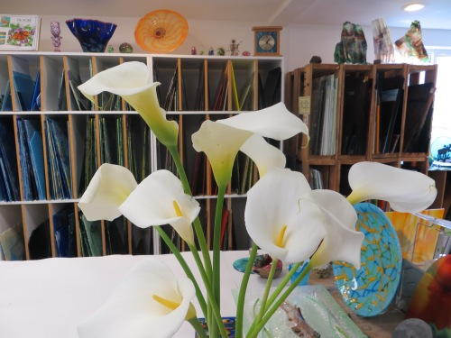 calla lilies back with sheets of stained glass