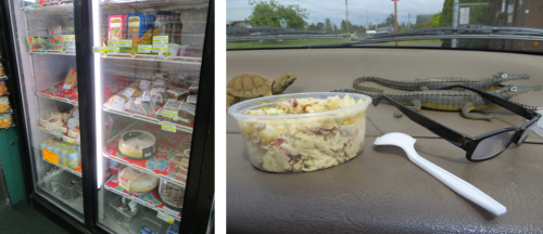 Bliss:  The Jack's Snacks Cooler and my potato salad in the car