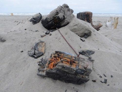 dangerous campfire remnants