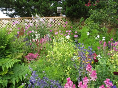 another view of new mixed bed