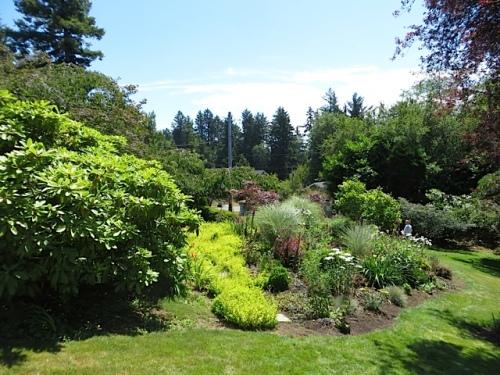 lower garden bed