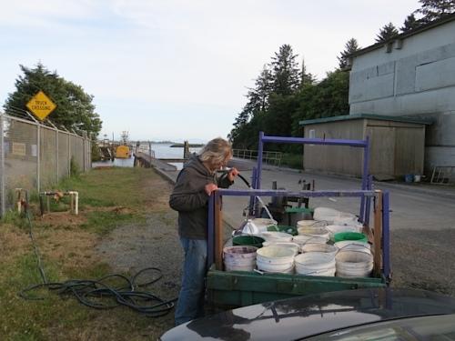 Allan fills buckets at the boatyard to bucket water the Ilwaco planters:  Hard, hard work.  (The bucketing, that is.)