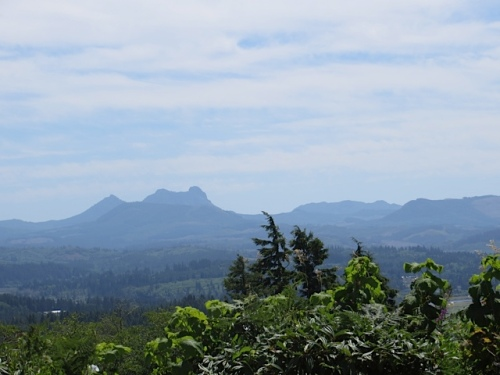 looking south to Saddle Mountain