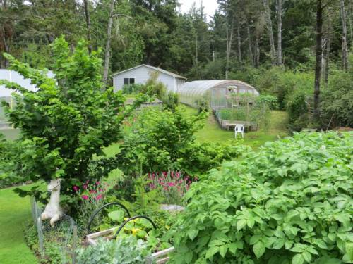 "further east, hoop houses, ""two and a fourth"" (small one), Lynn said."