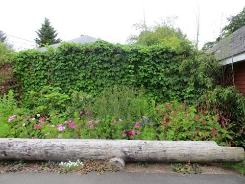 our Depot garden