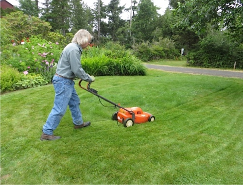 mowing a tiny lawn with a small electric mower