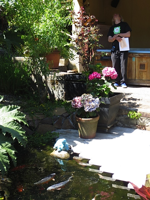 Here Allan examines the porch and you can see how the hot tub area relates to the koi pond.