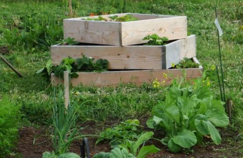 clever raised beds