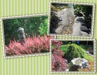 Deemer garden