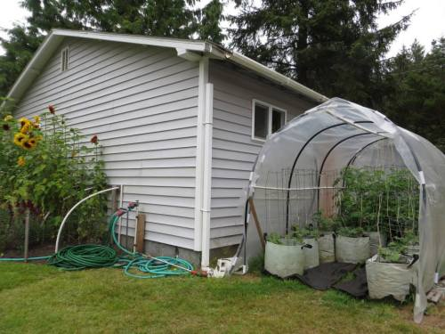 the littlest hoophouse