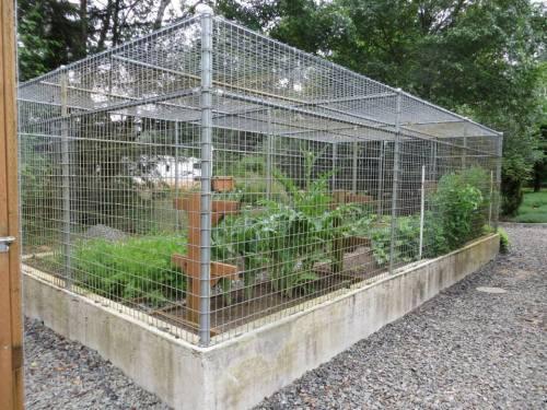 veg fortress