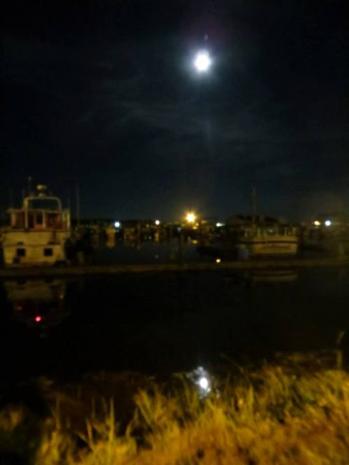 moon over the port marina