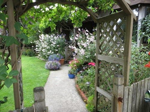 the joy of stepping through the arbour into the front garden!
