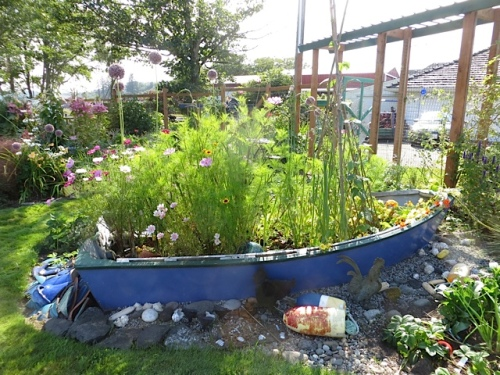 afternoon light on the garden boat