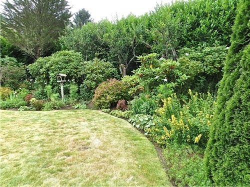 curving around from the pond, a mixed border