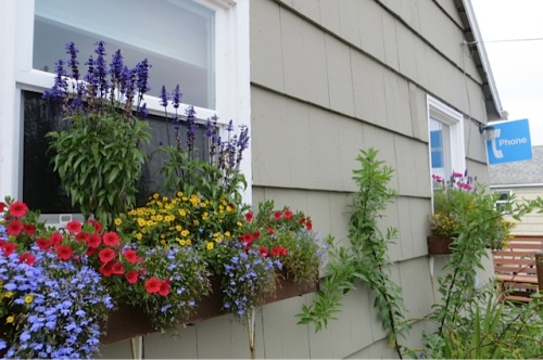 Anchorage window boxes