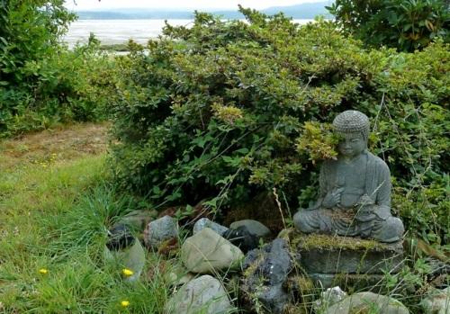 Allan found a Buddha.