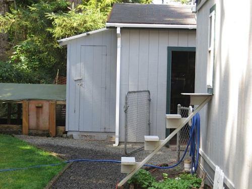 cat door in back yard