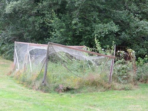 former deer-proof garden