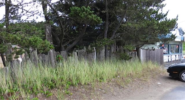 driftwood fence, Full Circle on Bay Avenue