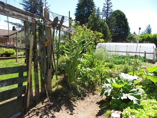 Patten garden