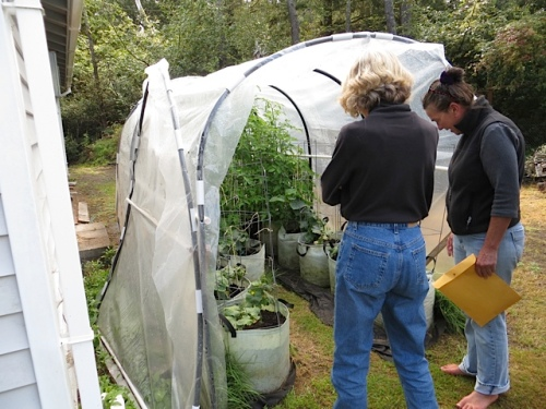 Lynn shows Deanette the tiniest poly tunnel