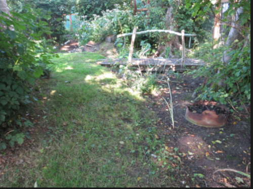 south edge, inside fence, looking east.  The property goes further south outside the fence.