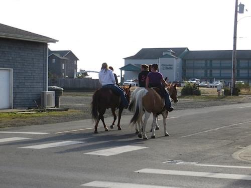 horses heading for the beach past Long Beach's main street
