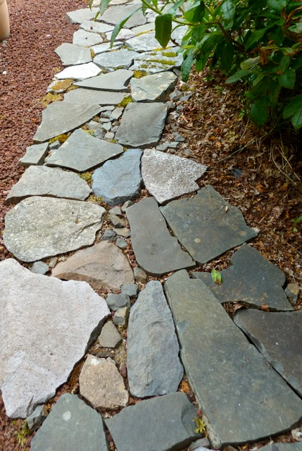 Allan's view of path by lava rock patio