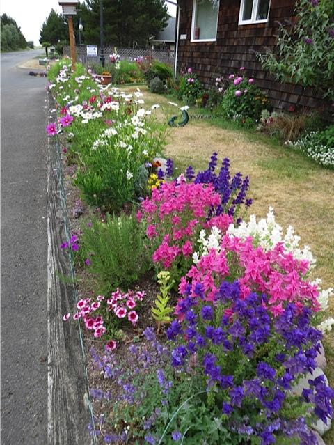 the street-side garden