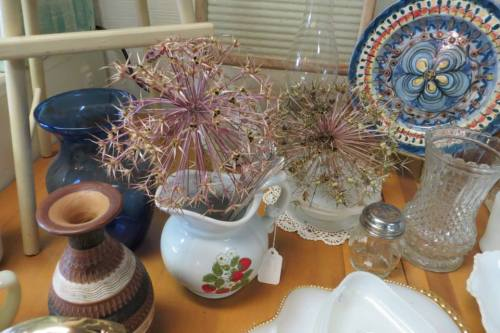 alliums from the boatyard...stemless...on display at Olde Towne