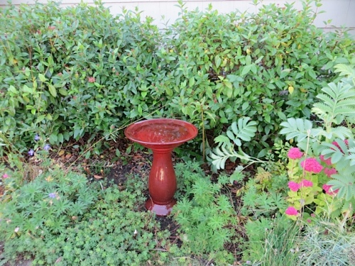 Manager Beth added this lovely birdbath.