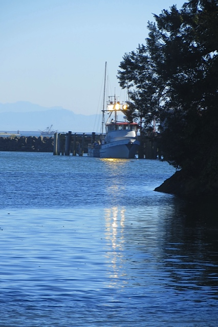 a fishing boat offloading at Ilwaco Landing