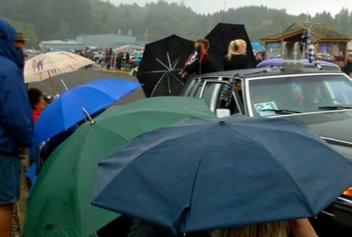 lots of brollies: audience and hot rod hotties