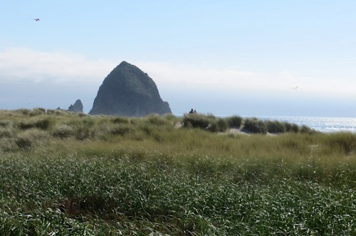 looking south, the famous Haystack Rock