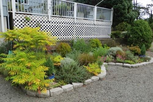 KBC: the driveway garden
