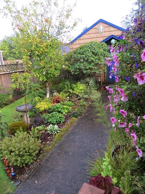 Allan's garden