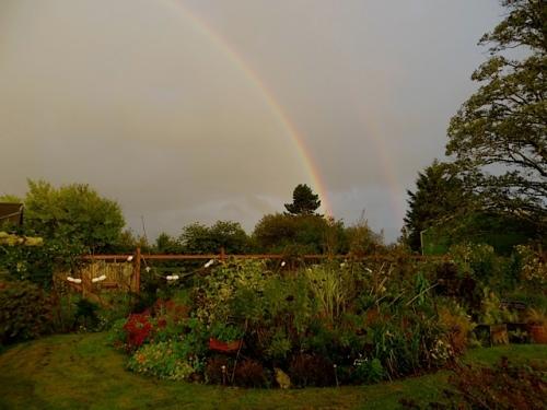 over the garden
