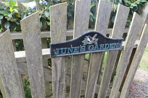 gate to June's back garden