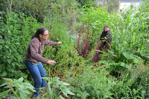 Pam and Prissy navigate through the jungle of interesting plants...