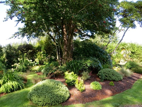 northwest garden bed