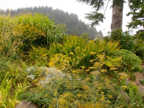 middle garden