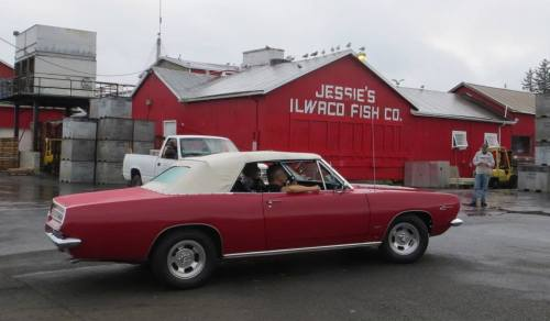 I always like to get a red car in front of Jessie's Fish Company