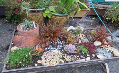 patio plant table