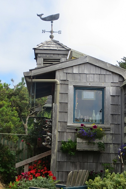 side view of the garden shed
