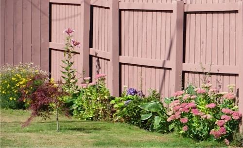 another Spruce Street garden