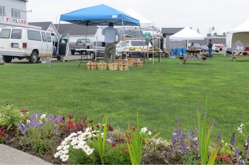 at three o clock, vendors were setting up for the afternoon farmers market