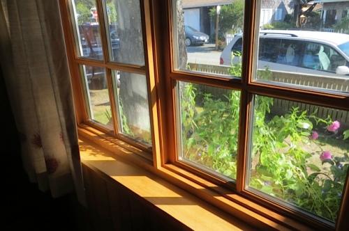 window and sunlight