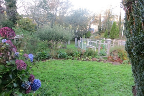 and the upper terrace of the back yard